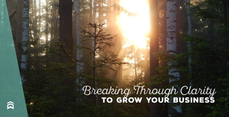 Breaking Through Clarity to Grow Your Business
