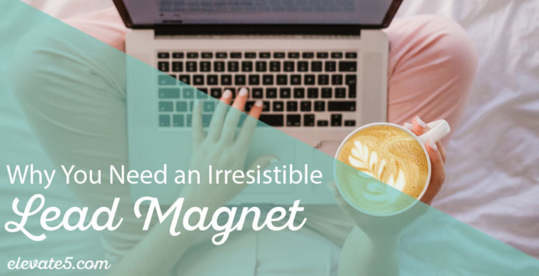 Why you need an Irresistible Lead Magnet